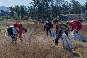 Restore the Palo Alto Baylands