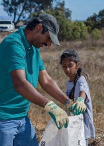 Celebrate world soil day by caring for native seedlings