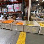 Food Share Inc