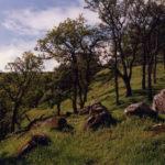 Walnut Creek Open Space Foundation