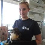Wildlife Rescue Sonoma County