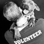 LA Animal Services