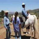 Dream Rider Equestrian Therapy